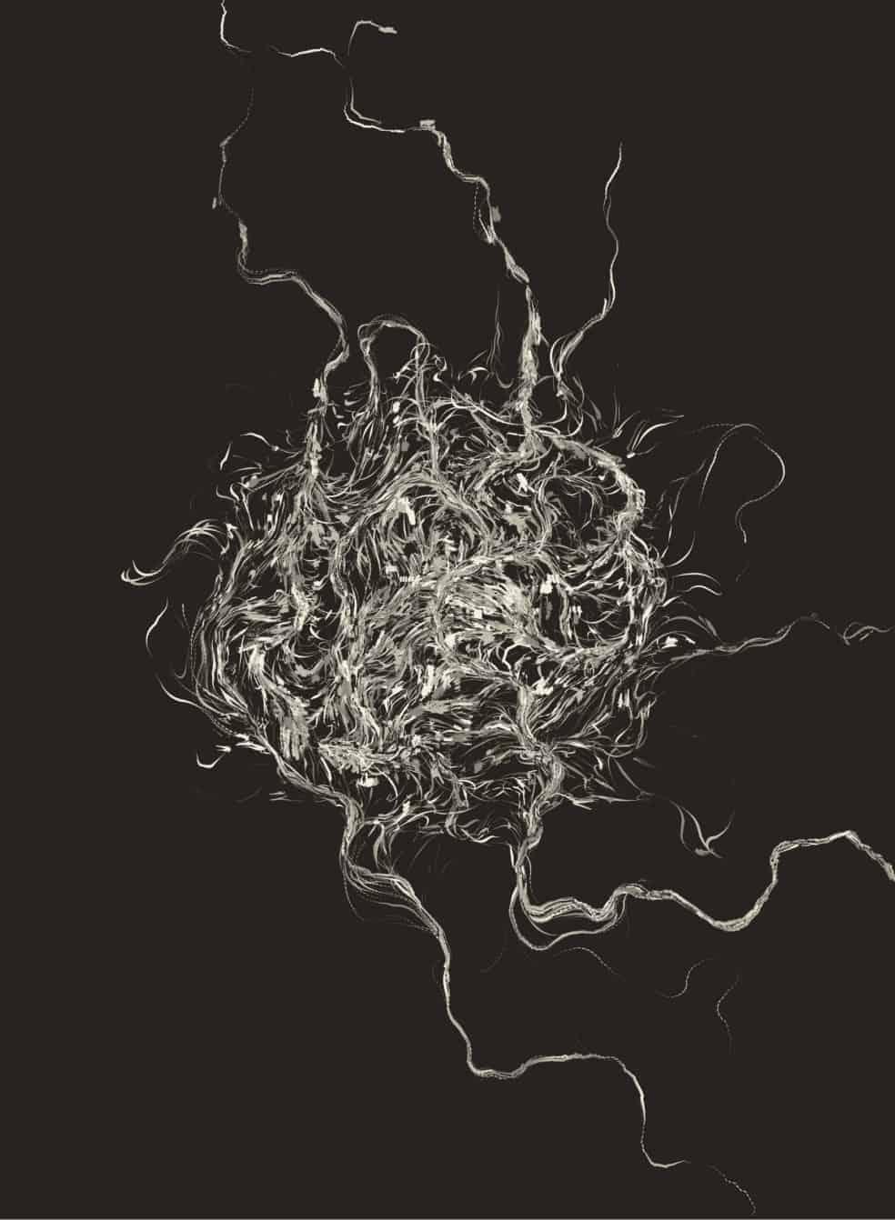 FLow Fiel Generative art javascript 02